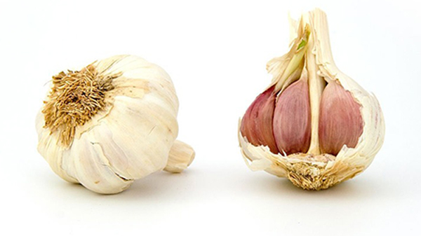 benefit of garlic is it's anti-aging properties
