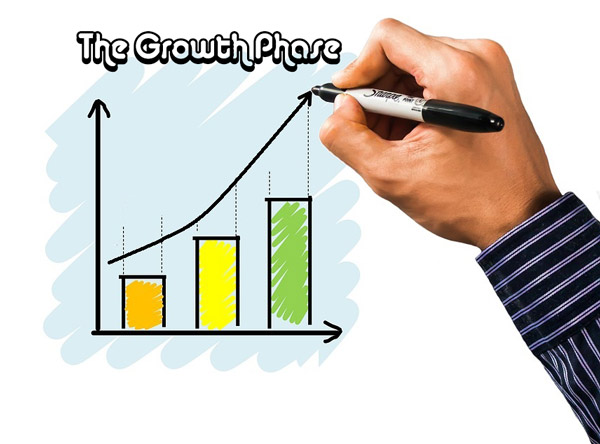 The growth phase of the Sigmoidal Curve