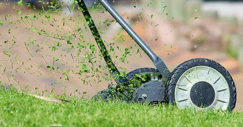 5 Best Self-propelled Lawnmowers