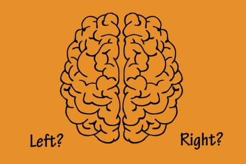 Which Side of Your Brain is Creative?