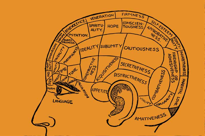 Other creative parts of the human brain
